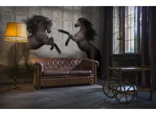 Обои Allusion Horses 19692