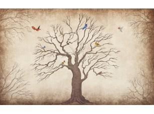 Обои Arbre Раскидистое дерево 16898