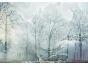 Обои Arbre Загадочный лес 18560