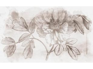 Обои Floreale Peony Moutan 18651