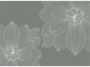 Обои SweetHome Flower line (green) 18835
