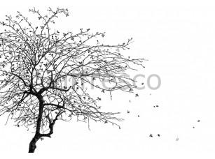 Фреска Графика арт. ID135780