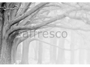 Фреска Ветви деревьев, арт. ID12421