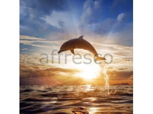 Фреска Прыжок дельфина, арт. ID11199