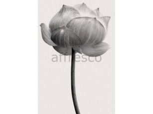 Фреска Бутон цветка, арт. ID12813
