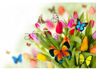 Фреска Бабочки на тюльпанах, арт. ID12754