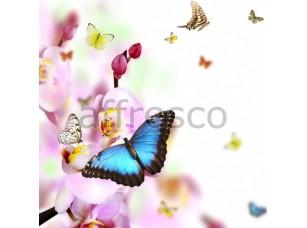 Фреска Бабочка на цветах, арт. ID12727