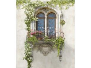 Цветущее окно,  4968