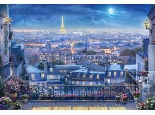 Ночной Париж,  6550