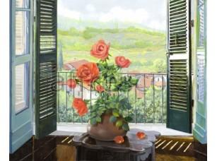 Роза на окне,  6780